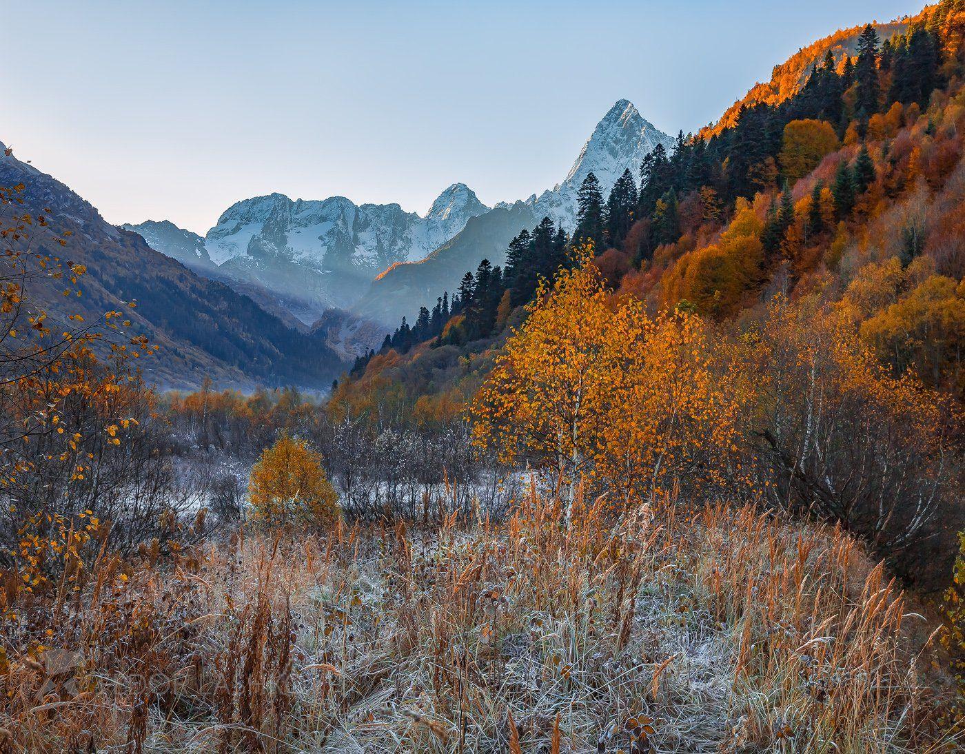 горы, гора, домбай, иней, рассвет, осень, берёза, гоначхирском ущелье, тебердинский государственный природный биосферный заповедник. кавказ, хребет, вершина, трава,, Лашков Фёдор