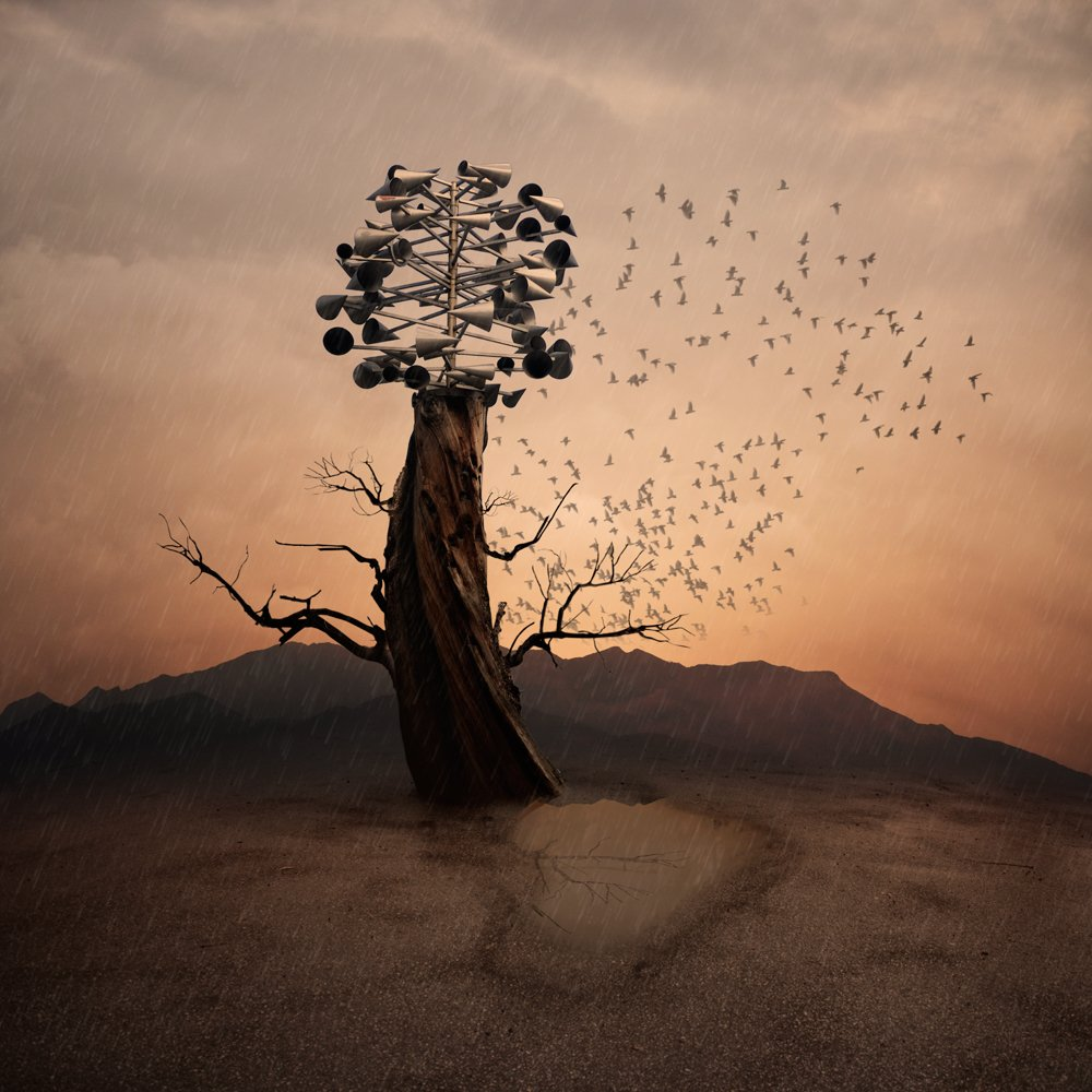 fire, sky, red, birds, clouds, tree, fly, crow, ground, mounting, stand, burn, con, Caras Ionut