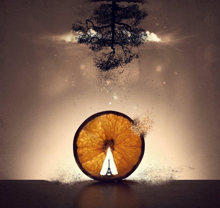 orange,tower,paris,clouds,tree,photo,art,digital,vladimir,shipulin,фото,арт,владимир,шипулин,апельсин,сюр,сюрреализм,surrealism,башня,париж,облако,дерево, Vladim_Shipulin