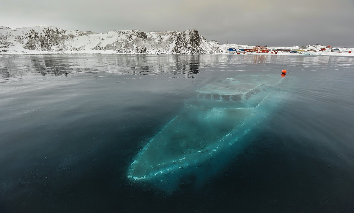 антарктика, king georg island, бухта ардли, яхта \, Руслан Елисеев