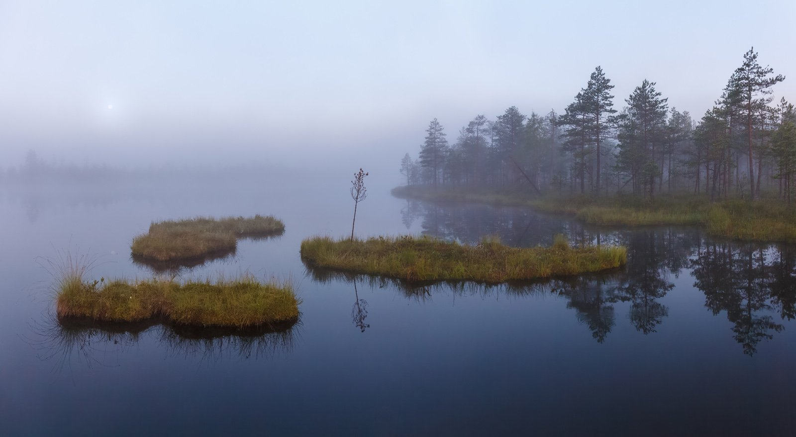болото, плавающие острова, сплавина, Арсений Кашкаров
