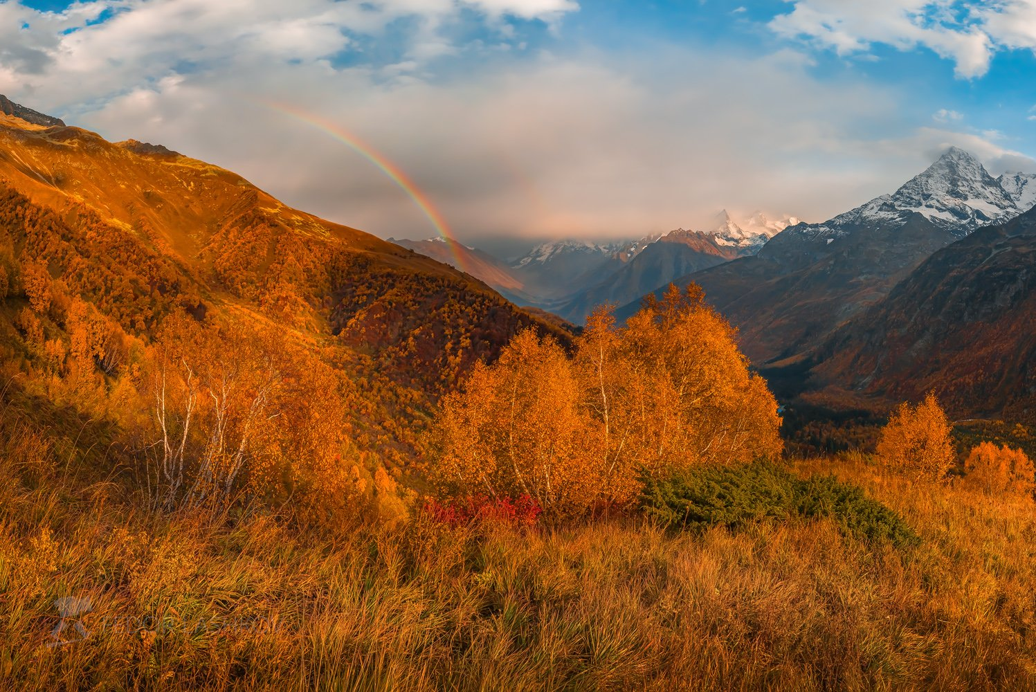 горы, домбай, закат, осень, радуга, тучи, непогода, лес, тебердинский государственный природный биосферный заповедник, кавказ, хребет, вершина, трава, алебек, берёза, трава, луг, альпийский луг,, Лашков Фёдор