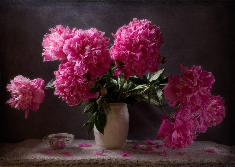 натюрморт, пион, розовый. чашка, лето, цветы, символ страсти, peony, pink, summer, flower, symbol of passion, still life, El. G.