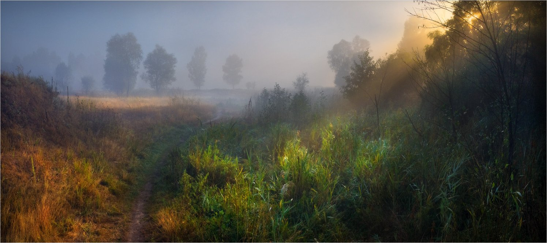 утро, тропа, лучи, туман, Александр Киценко