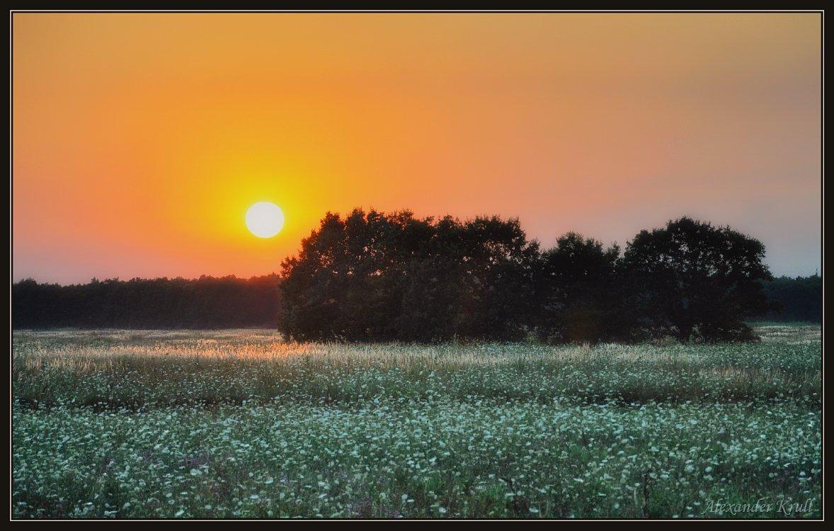 вечер, закат, поле, Александр Круль (Туристтт)