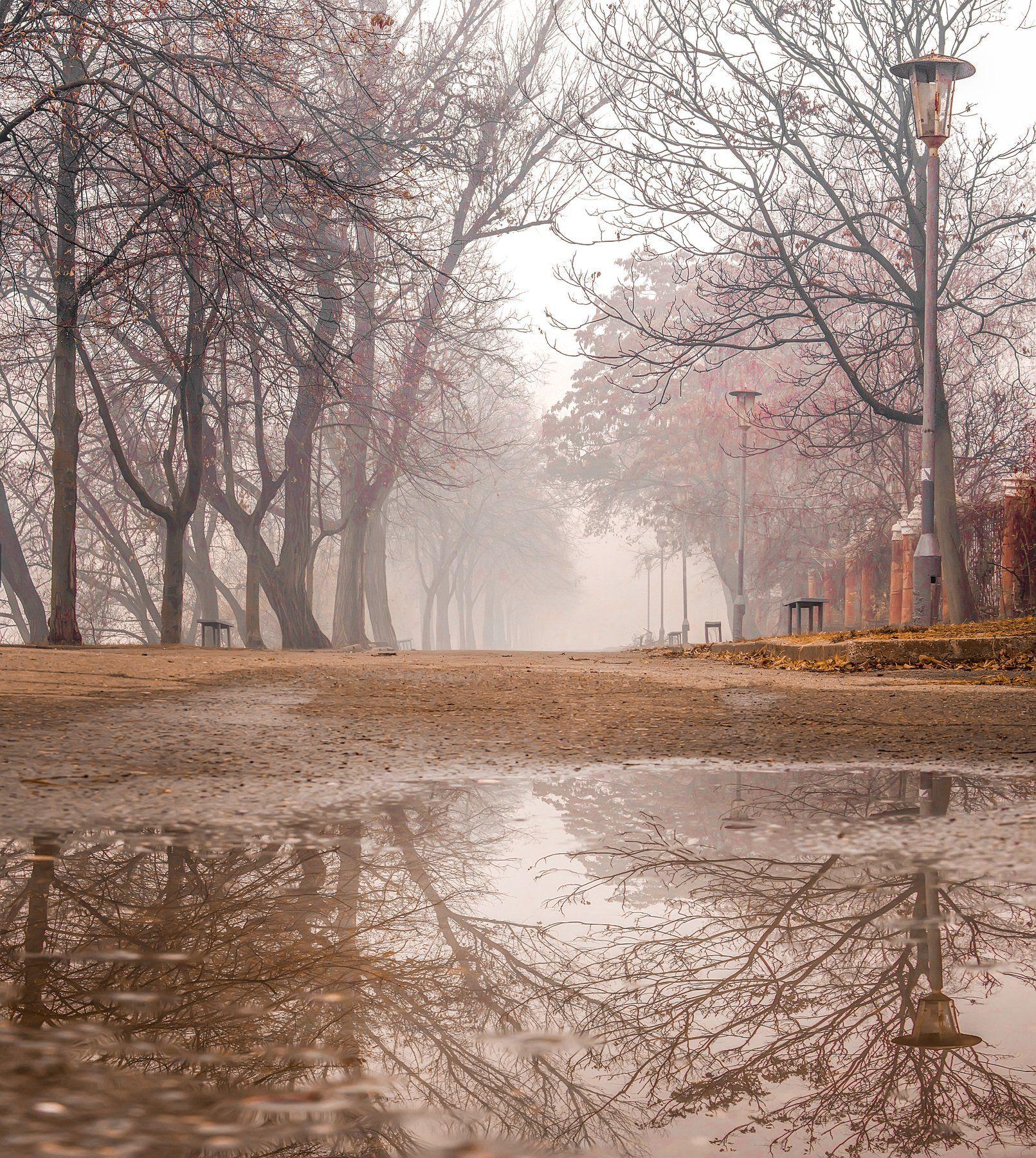 отражения, осень, пейзаж, лужи, природа, Квочка Игорь