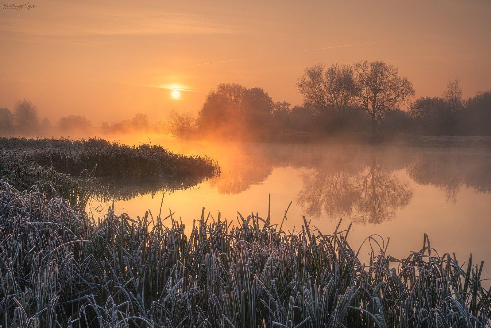 warta, morning, autumn, fog, trees, river, nature, Bartłomiej Kończak