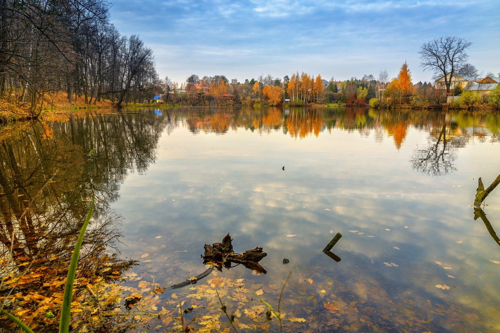 пейзаж, осень, озеро, пруд, желтый, листья, переделкино, landscape, autumn, lake, pond, yellow, leaves, peredelkino, Шурчков Юрий