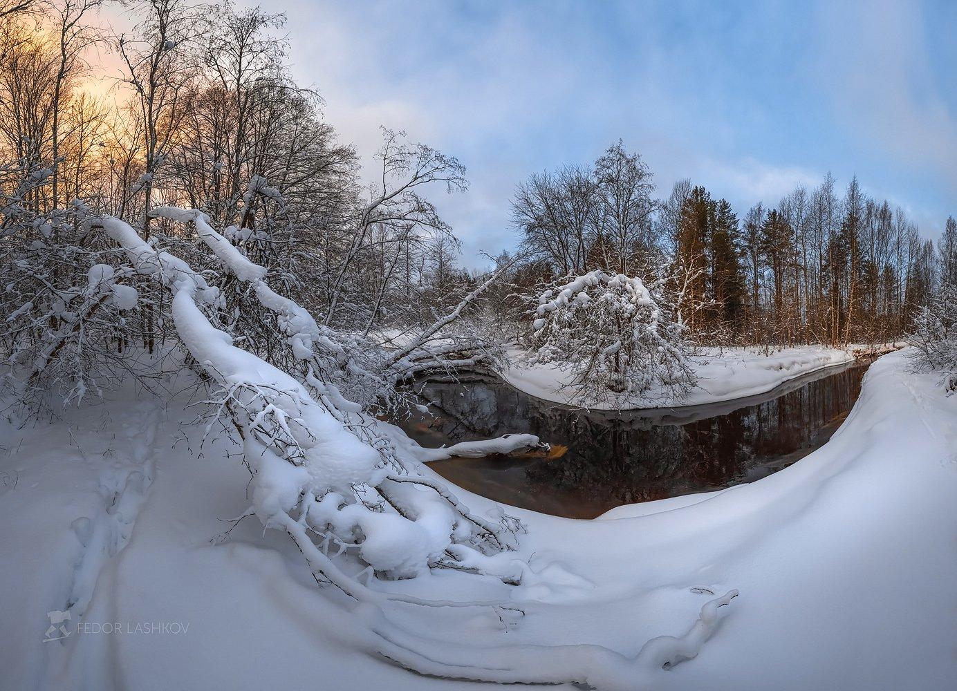 ленинградская область, рассвет, снег, зима, лес, дерево, снегопад, река, ветви, небо,, Лашков Фёдор