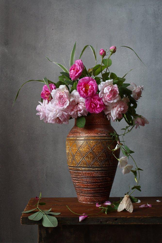 натюрморт, цветы, букет, розы, июль, мотылек, Курочкина Диана