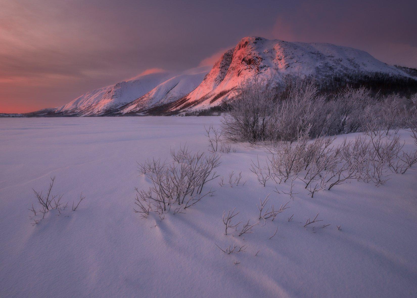 пейзаж,россия,хибины,горы,кольский,север,зима,небо,рассвет, Истомин Виталий