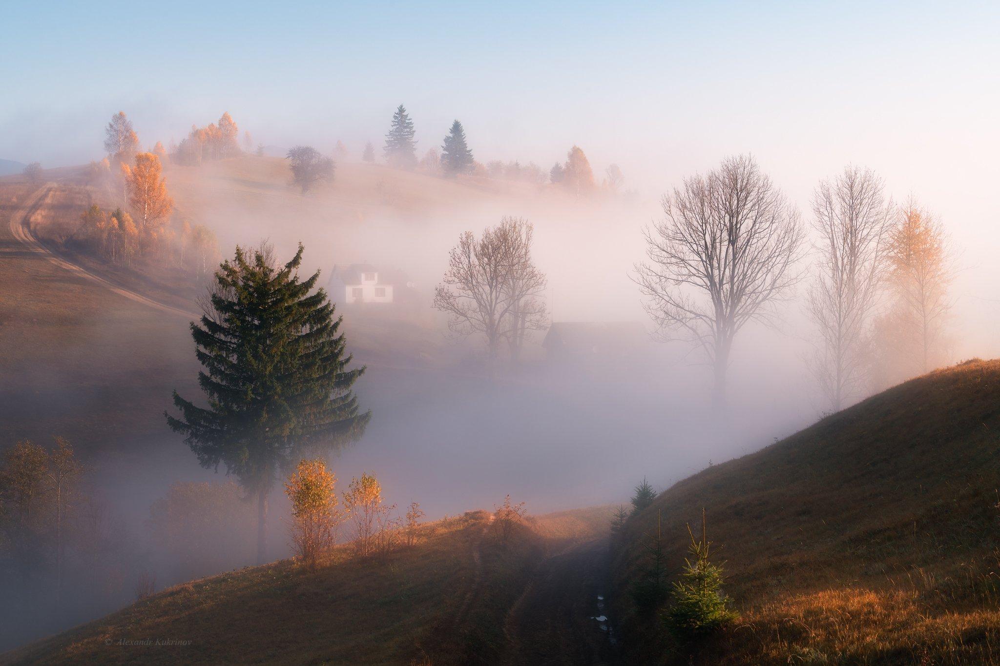 карпаты, осень, пейзаж, утро, рассвет, туман, Александр Кукринов