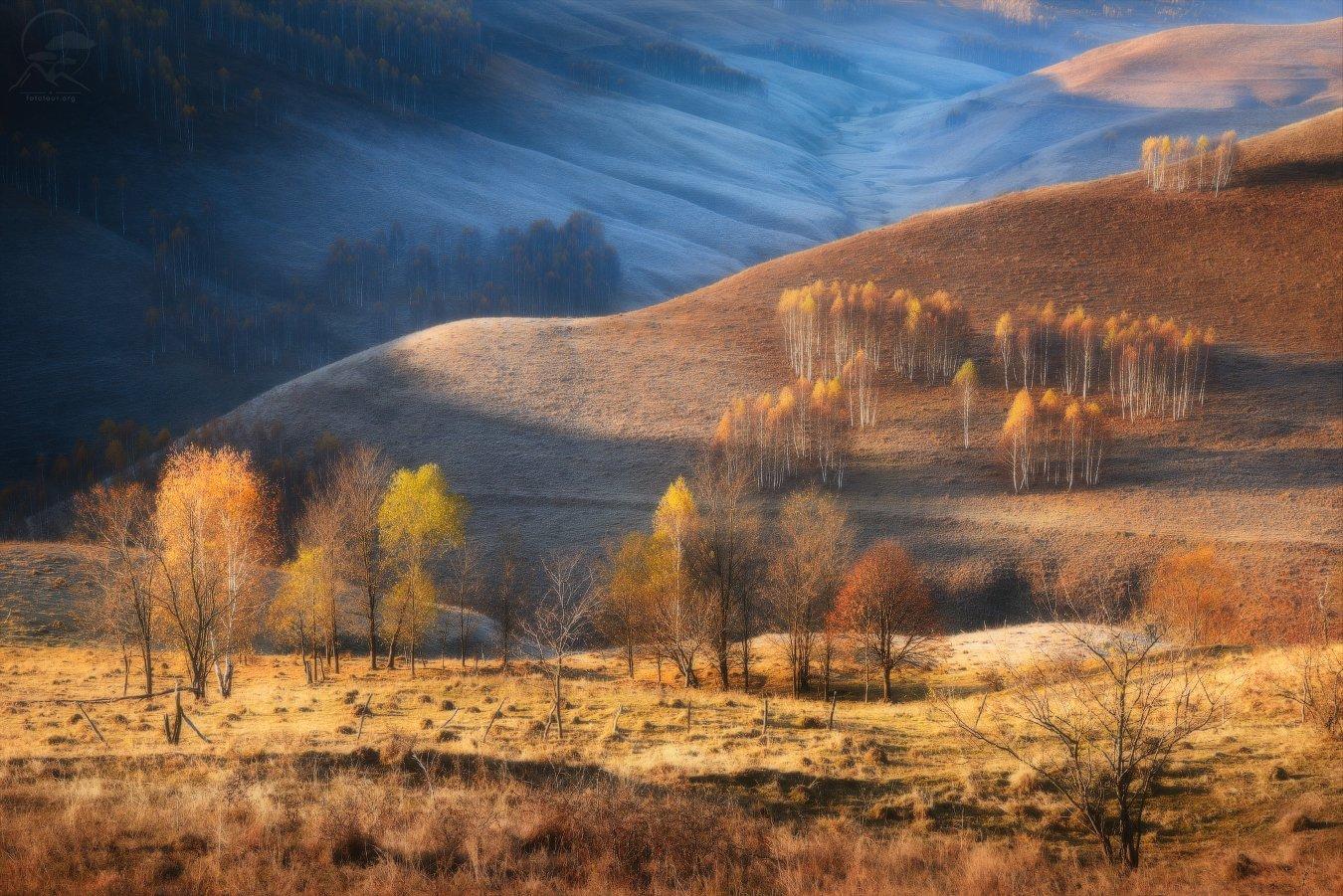 румыния, трансильвания, карпаты, горы, осень, пейзаж, иней, Гордиенко Анатолий