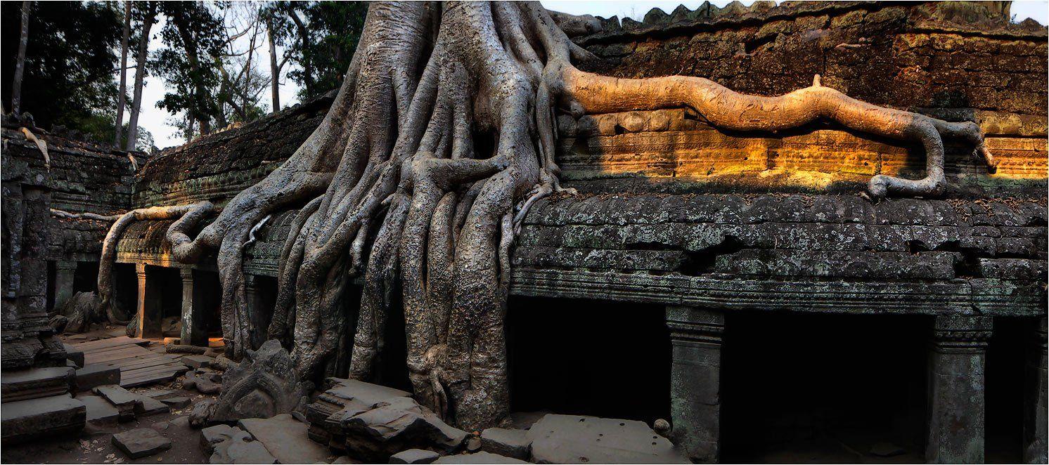 камбоджа, ангкор, Yury Pustovoy