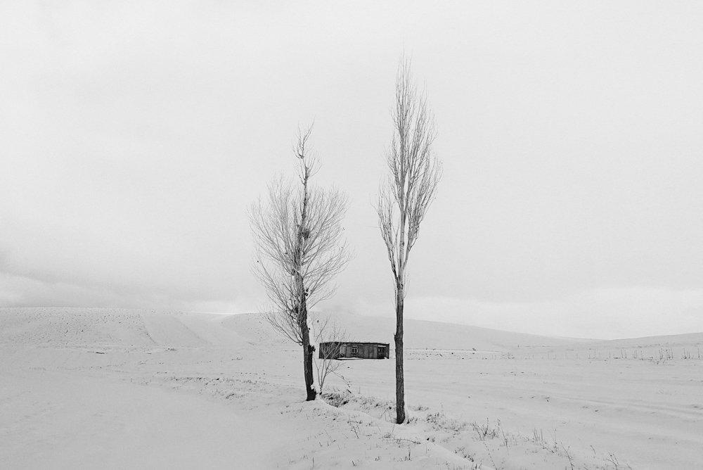 bnw, landscape, tree, snow, hut, Dadsetan Mohammad
