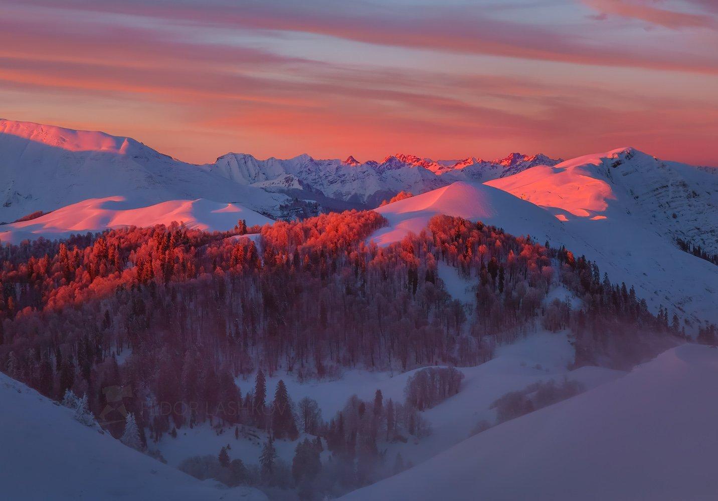 абхазия, путешествие, туризм, горы, зима, лес, горы, в горах, мамдзышха, пихта, снег, склоны, закат, розовый, в снегу, небо, красочно, в снегу,, Лашков Фёдор