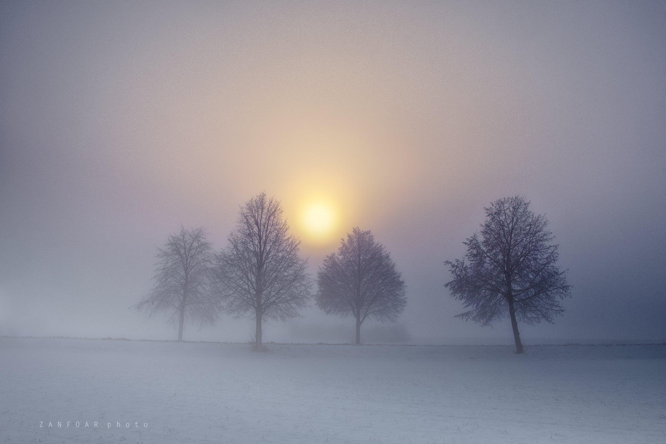 мороз, утро,zanfoar,cech republic,bohemia,moravia,nikon d750,чехия,  Zanfoar
