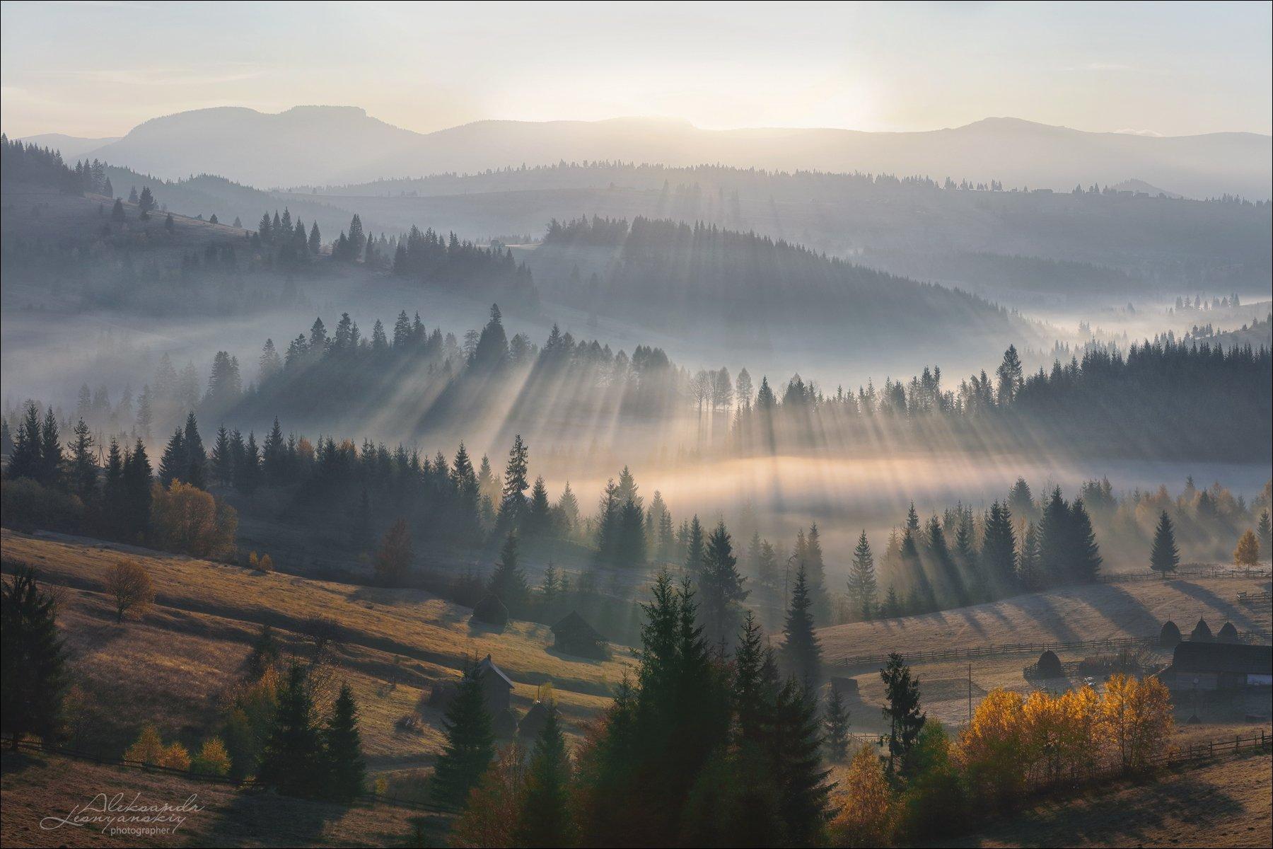 румыния, Александр Леснянский