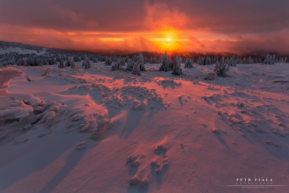 landscape, tree, sunrise, winter, snow, Petr Fiala