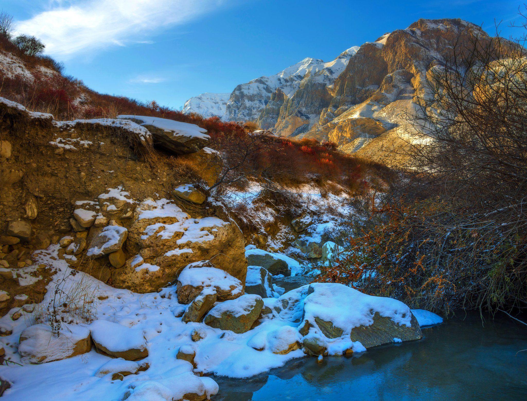 горы,зима,речка,облепиха,пейзаж, Елена Брежицкая