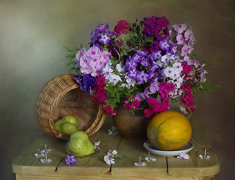 цветы ,флоксы , осень ,натюрморт ,вера павлухина ,, Вера  Павлухина