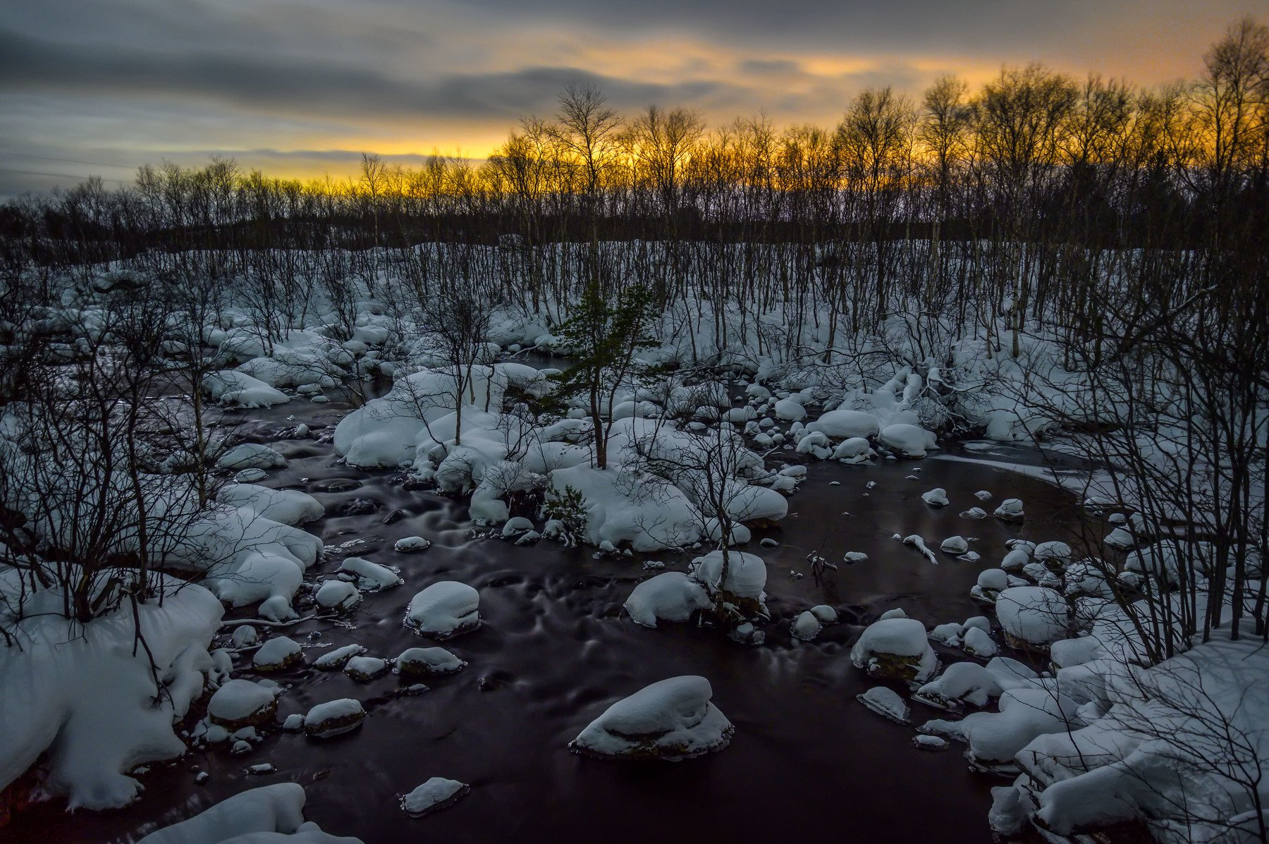 north night cold forest nature landscape kola peninsula forest winter, Бугримов Егор