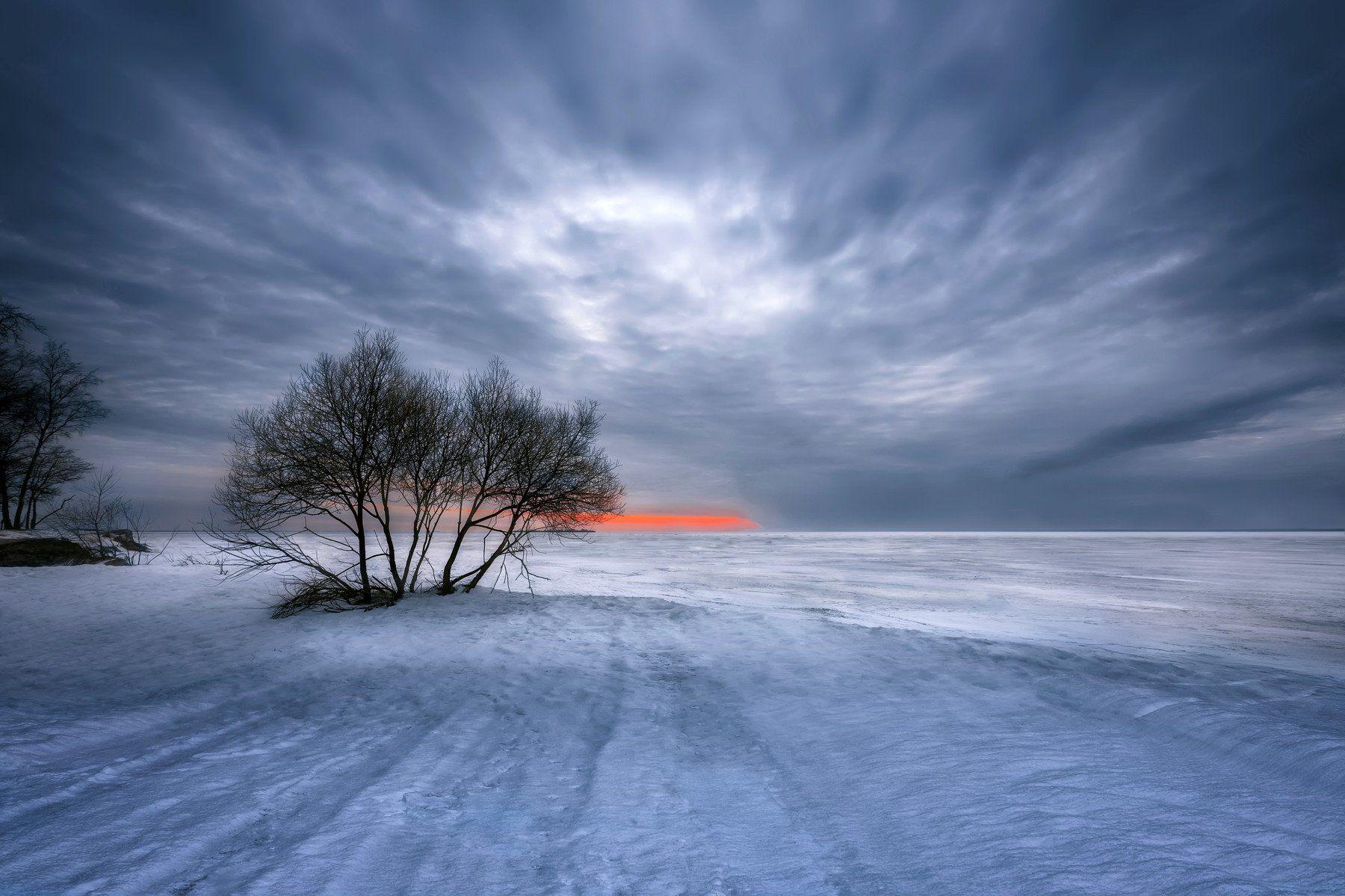зима,природа,море,снег,лёд,дерево,небо,закат, Тамара