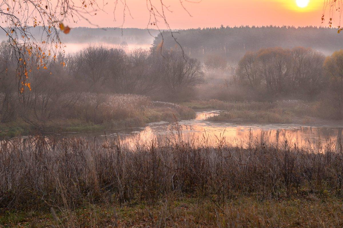 пейзаж,природа,россия,осень,золотая осень,туман, Юлия Лаптева