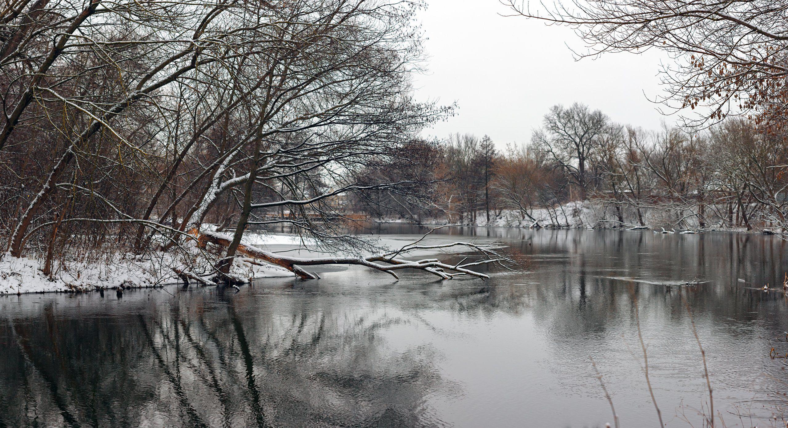 река,вода,деревья,снег,зима, Котов Юрий