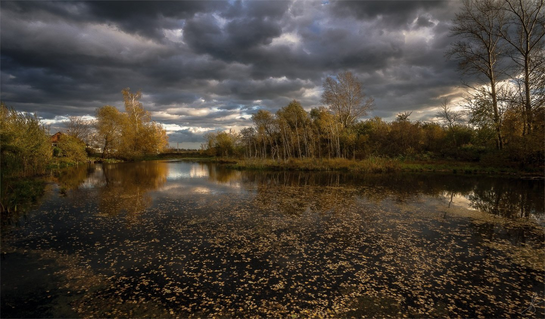вода, листья, небо, облака, октябрь, осень, пейзаж, природа,  тишина, Будин Николай