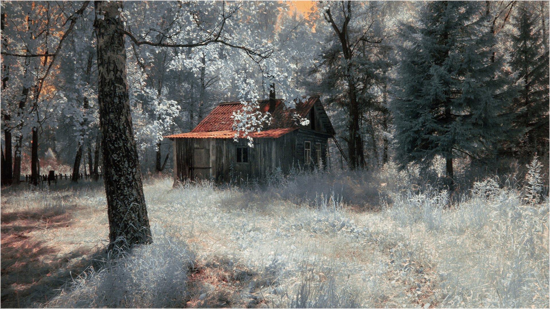 лето, лес, дом, глухомань,  Гобова Наталья