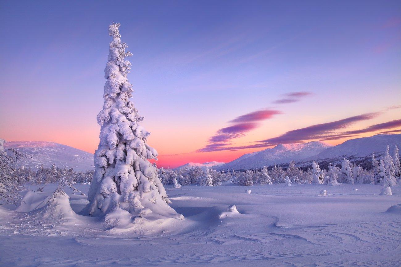 урал, зима, горы, снег, гух, рассвет, Бродяга с севера