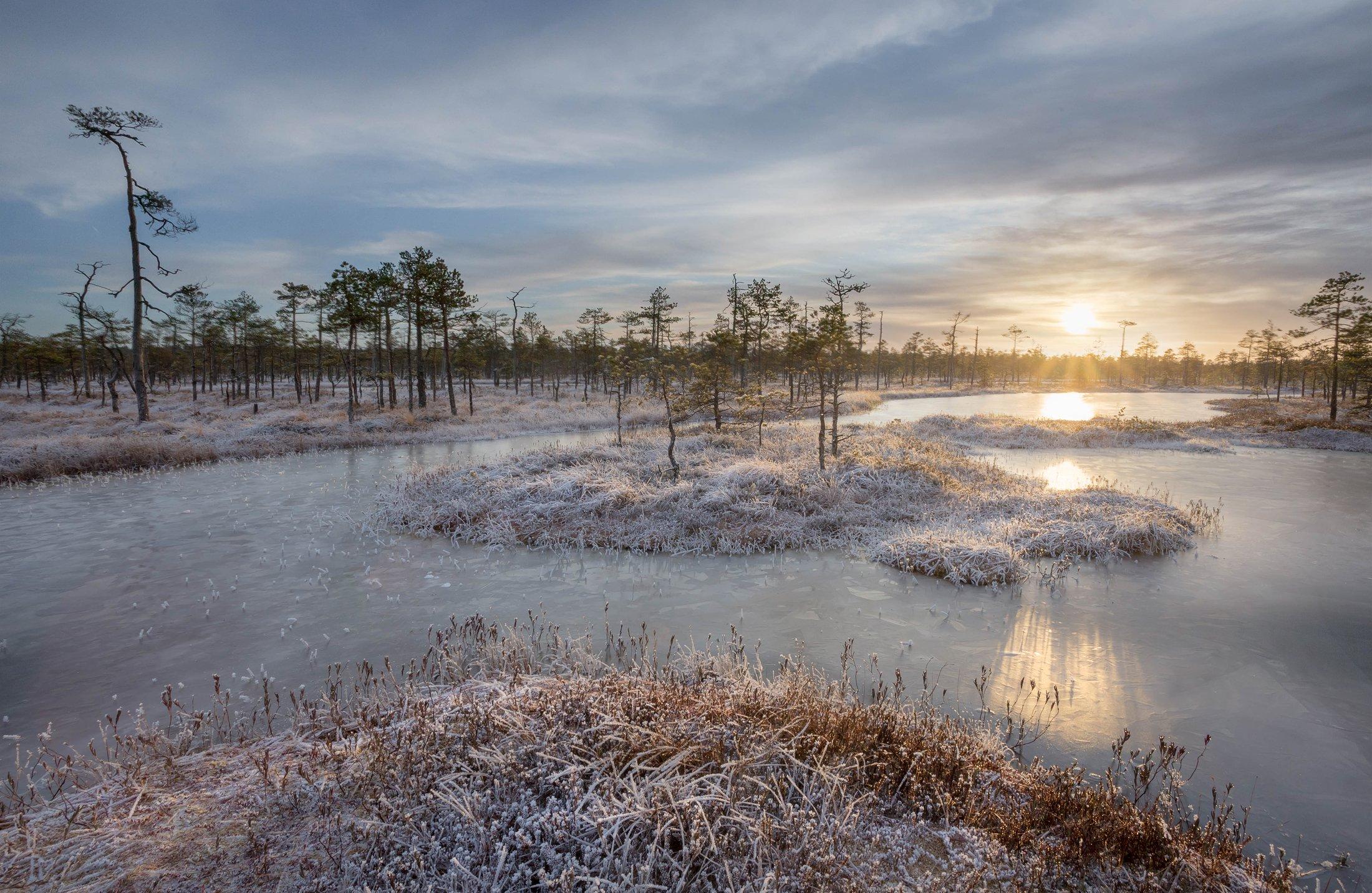 болото, кайф, рассвет ,север ,солнце, свет, закат, облака, отражение, фототур, Ващенков Павел