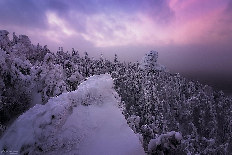 пермский край, зима, пейзаж, елки, Антон Кошетаров