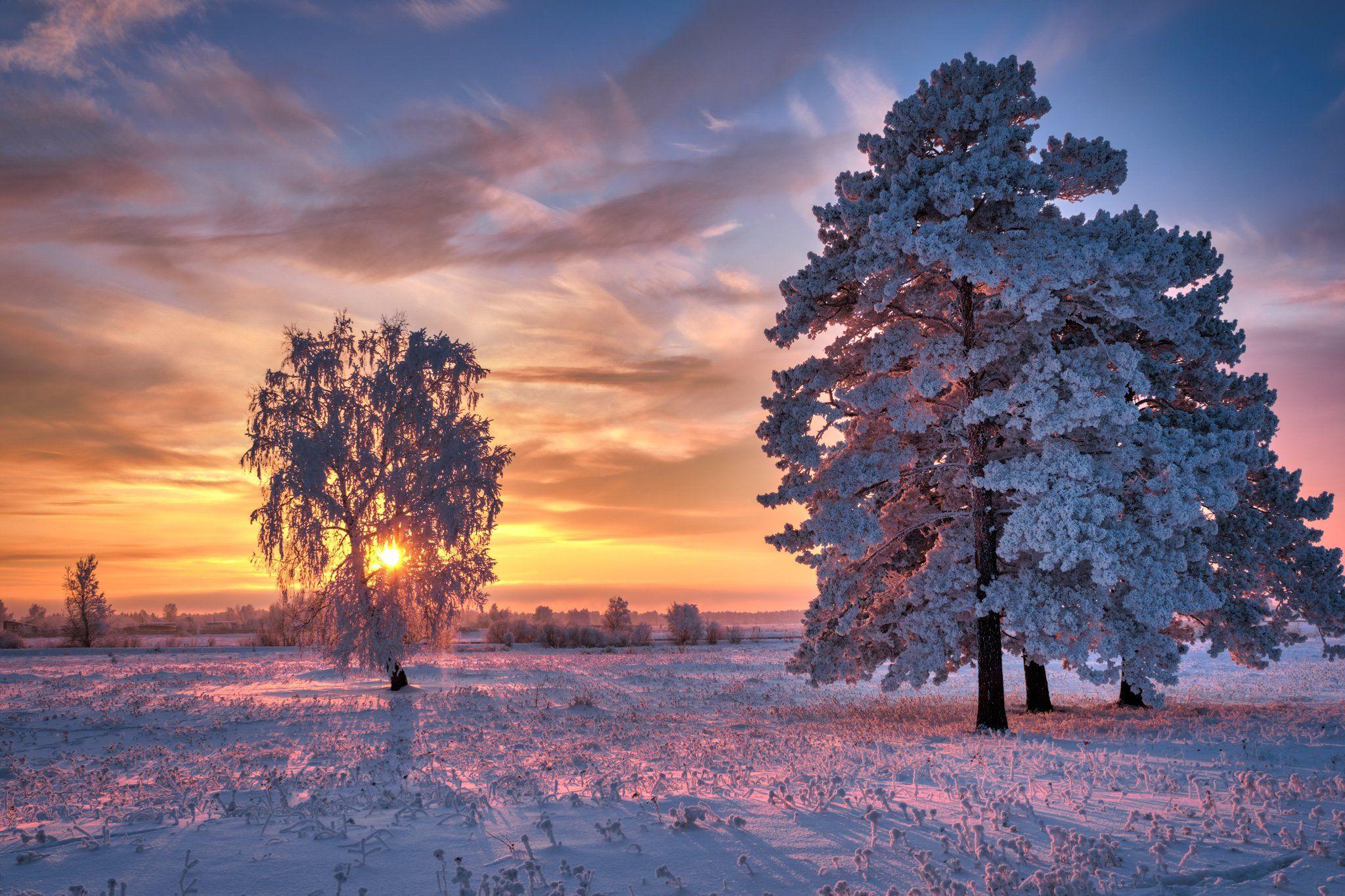 зимний пейзаж, зима, Константин Леонтьев