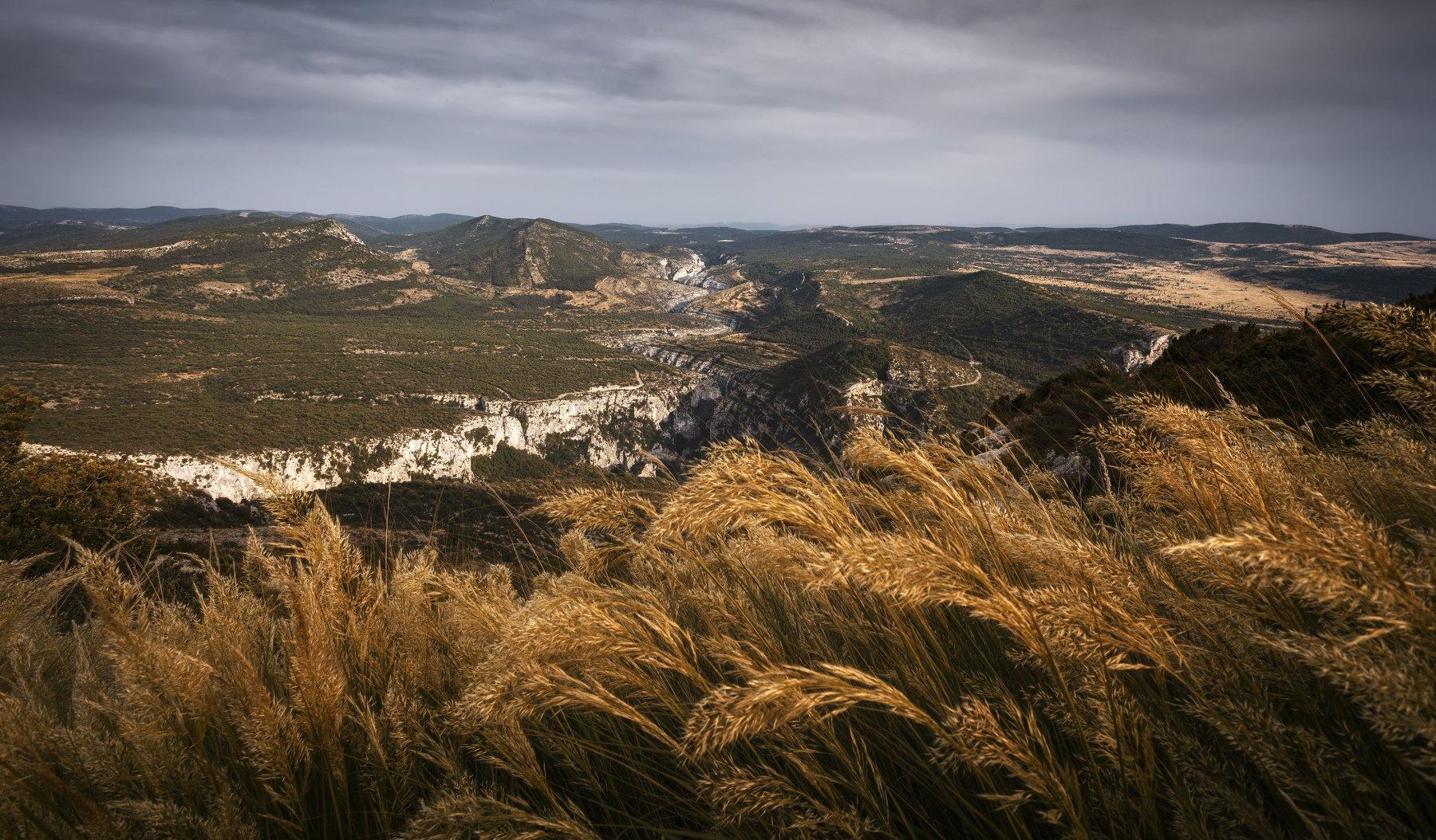 поле, трава, горы, Alexandr Bezmolitvenny