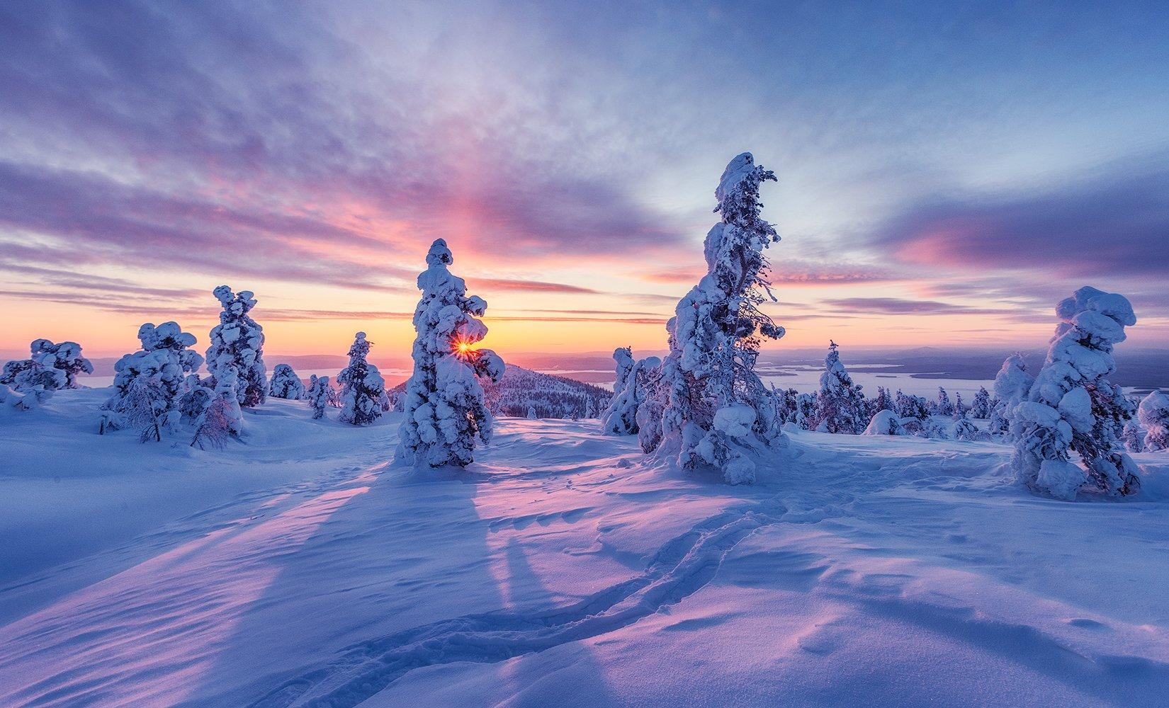 заполярье, гора, снег, волосная, ели, рассвет, закат, Липецких Владимир