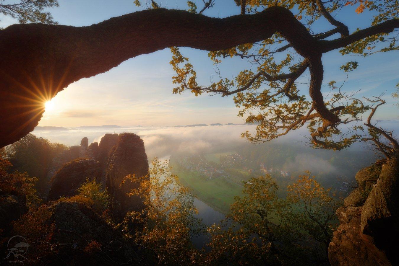 эльба, река, утро, пейзаж, саксония, богемия, Гордиенко Анатолий