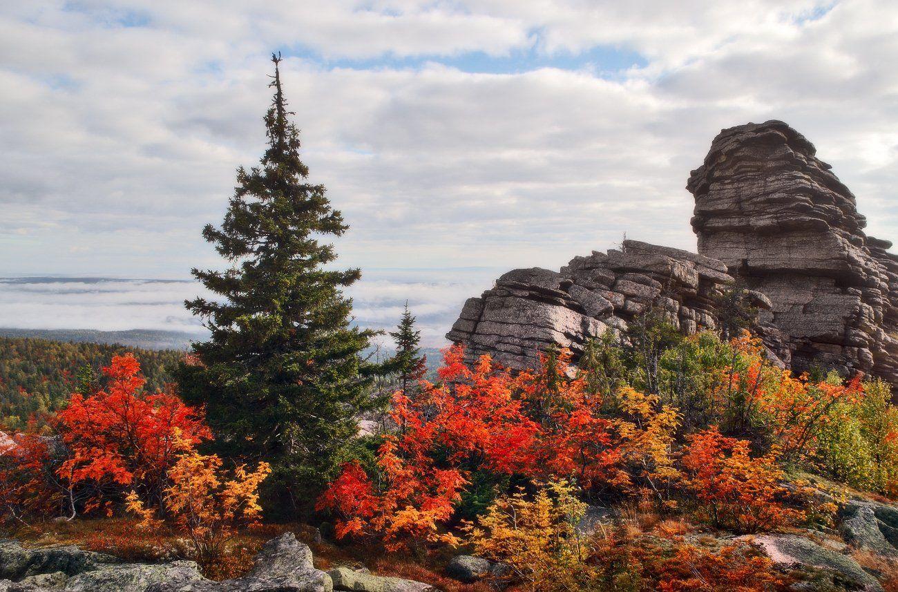 пейзаж, урал, осень, колчимский камень, Бродяга с севера