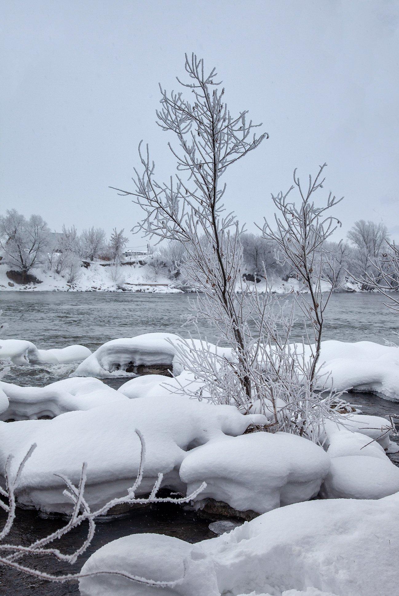 пейзаж,зима,дерево,иней снег,сугроб,река,мороз, Тамара Андреева