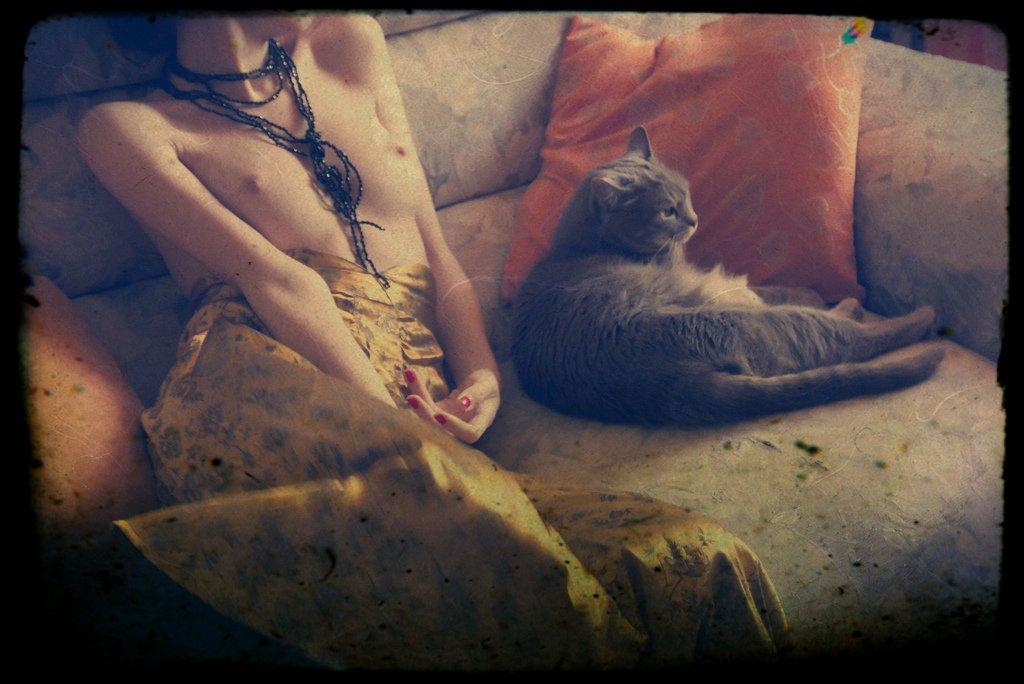 woman, cats, feeling, light, texture, Fabrizia Milia