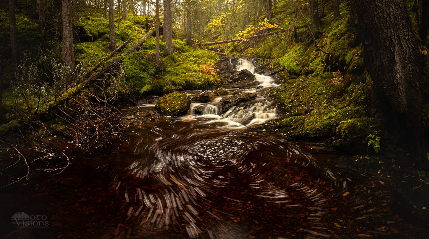 forest,green,river,stream,water,tree,trees,boreal,norway,norwegian,woods,woodland,, Szatewicz Adrian
