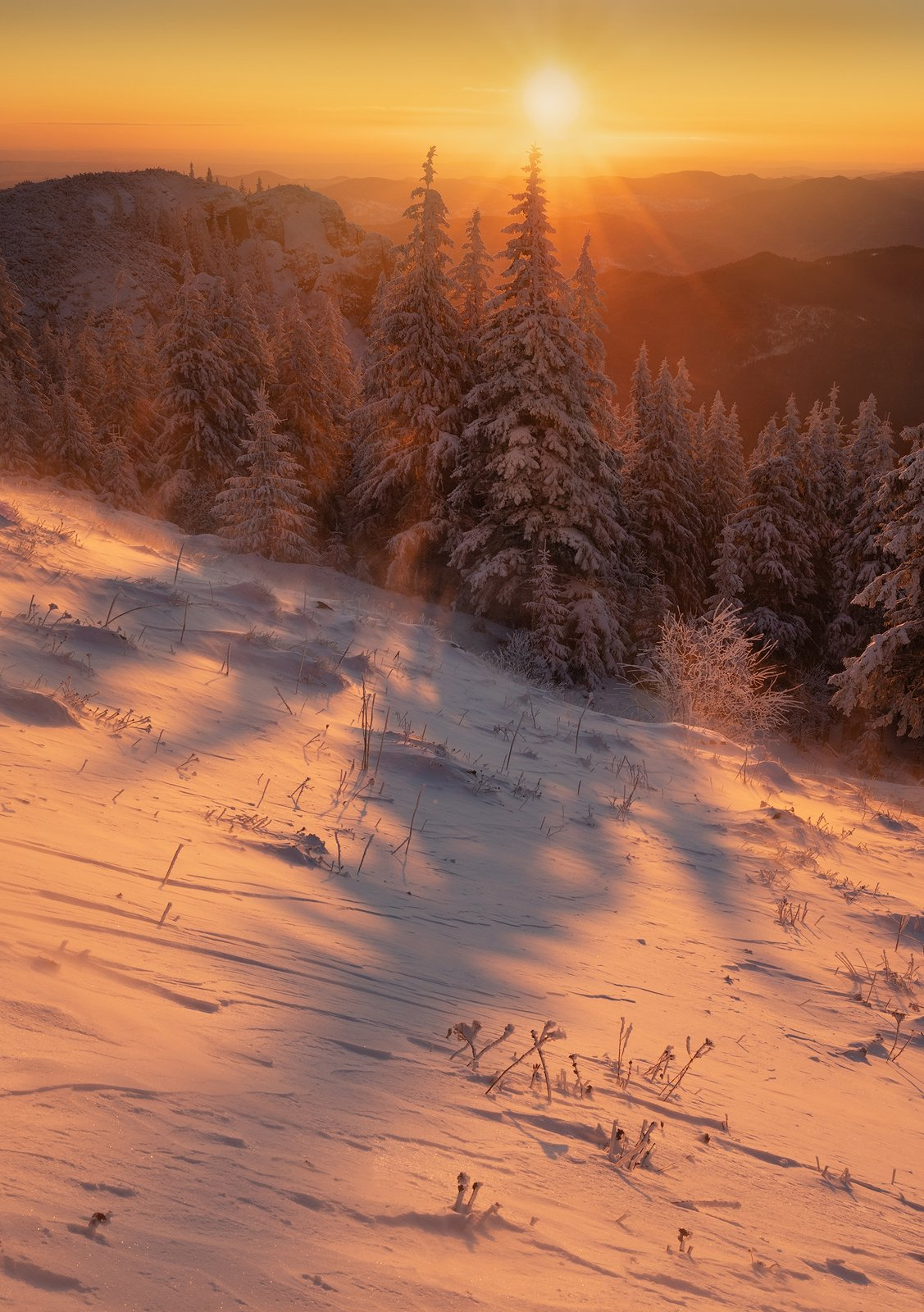 winter, trees, blizzard, snow, landscape, travel, nature, mountain, romania, cold, sunrise, Ioan Ovidiu Lazar
