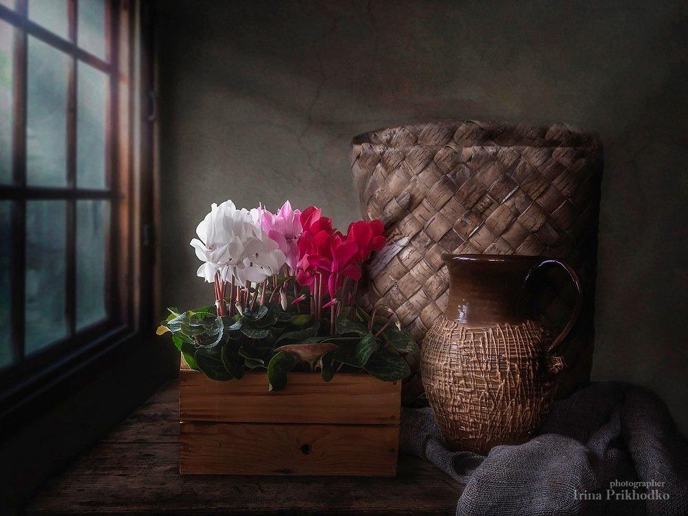 натюрморт, весна, цветы, цветочный винтажный, цикламены, дачный дом, ретро, , Приходько Ирина