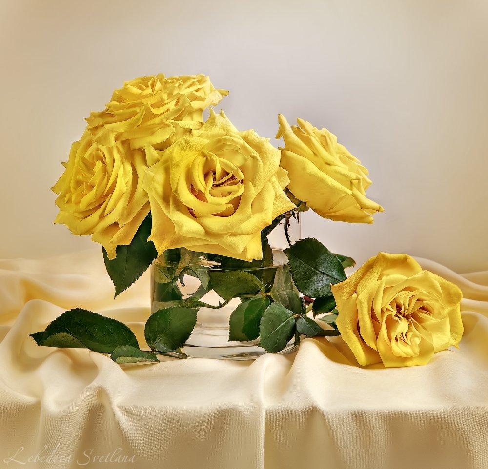 розы,жёлтые розы,натюрморт,ваза,, Л. Светлана