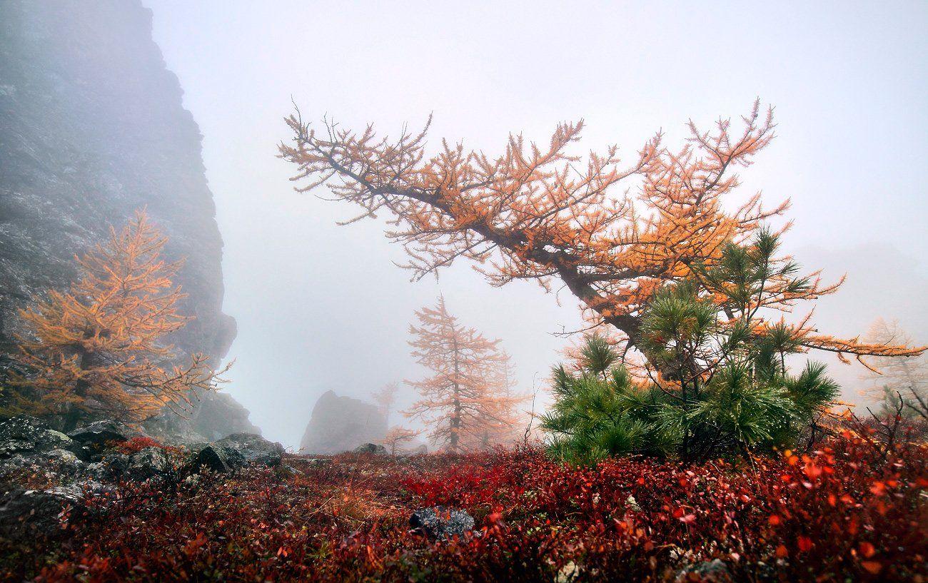урал, осень, серебрянский камень, Макурин Сергей