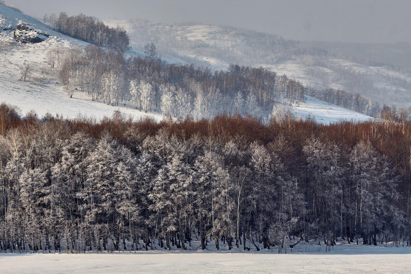 южный урал,оренбургская область, орск, новотроицк,башкирия, башкиртостан, Качурин Алексей