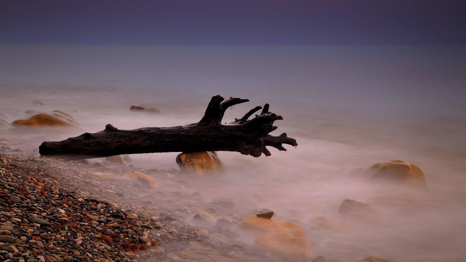 море, прибой, камни, коряга, Serj Master