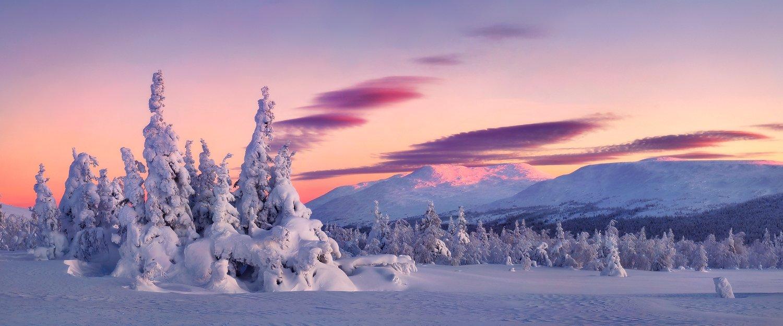 урал, зима, гух, закат, снег, ели, облака, Макурин Сергей