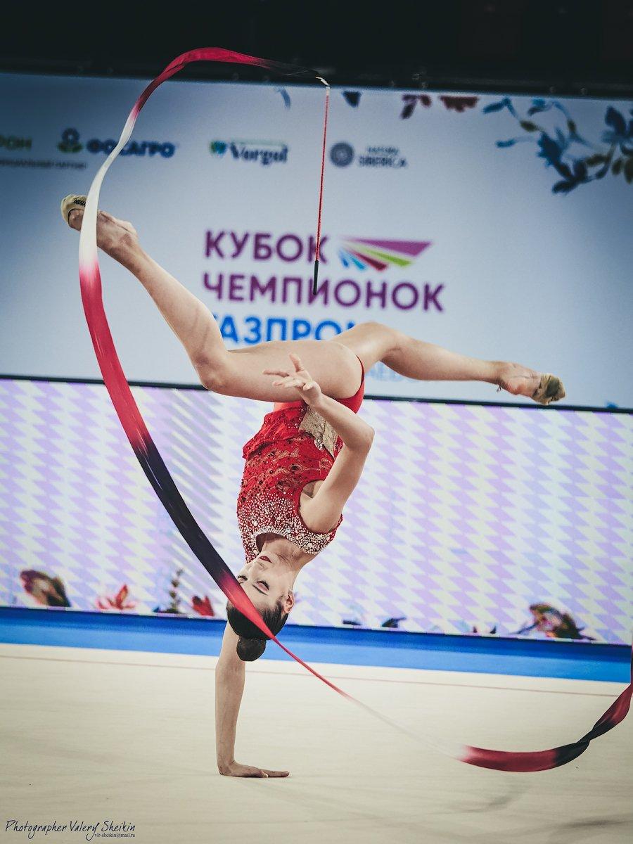 , Валерий Шейкин